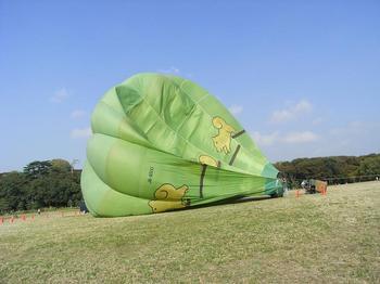 2009.10.18水元公園気球.jpg