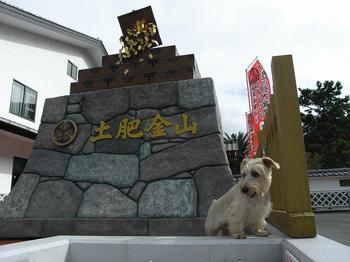 20101031 土肥金山.jpg