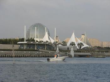 臨海公園_2009.10.31-2.jpg